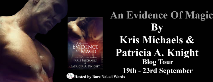evidence-of-magic-tour-banner